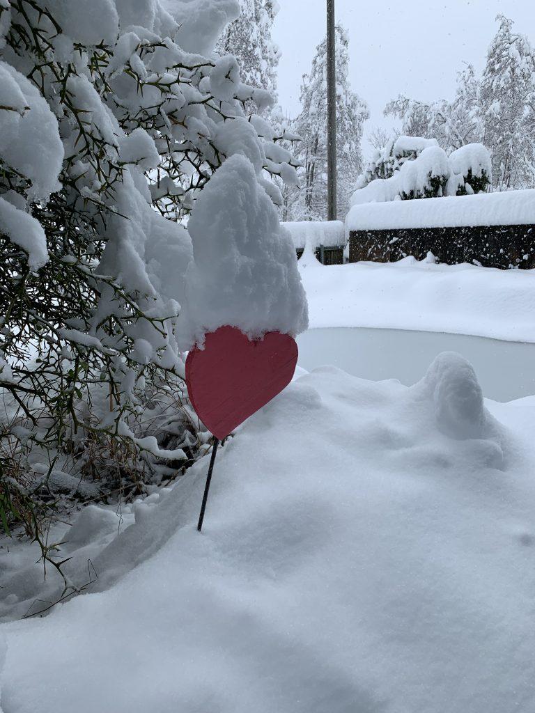 Herz unter Schnee