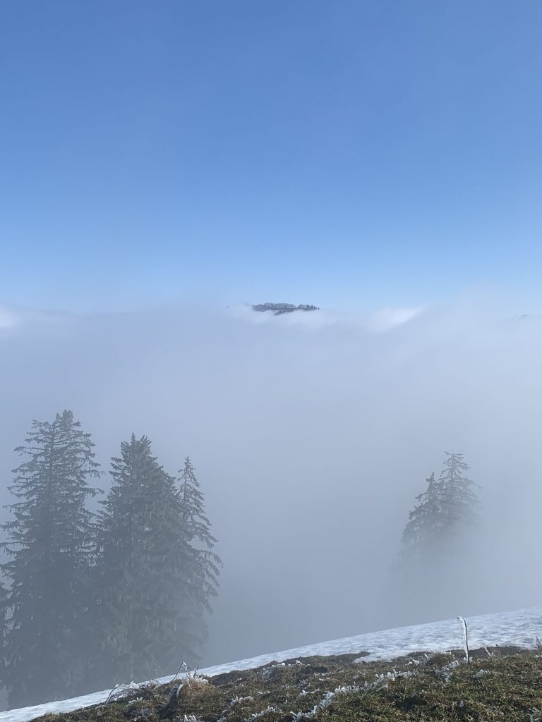 Schnebelhorn als Insel im Nebelmeer